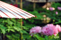 Asian Umbrella and Garden - PhotoDune Item for Sale