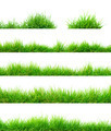 Grass - PhotoDune Item for Sale