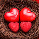 Nest with hearts - PhotoDune Item for Sale