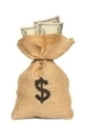 Bag with Money and Dollar Sign