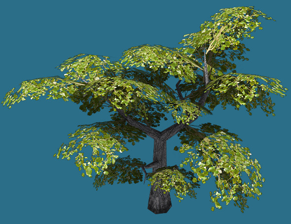 Low Poly Tree Model - 3DOcean Item for Sale