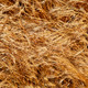 Background of Dry Cereals - PhotoDune Item for Sale
