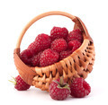 Ripe raspberries in basket - PhotoDune Item for Sale