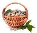 Herbal drug capsules in wicker basket. Alternative medicine conc - PhotoDune Item for Sale