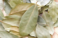 Bay Leaves  - PhotoDune Item for Sale