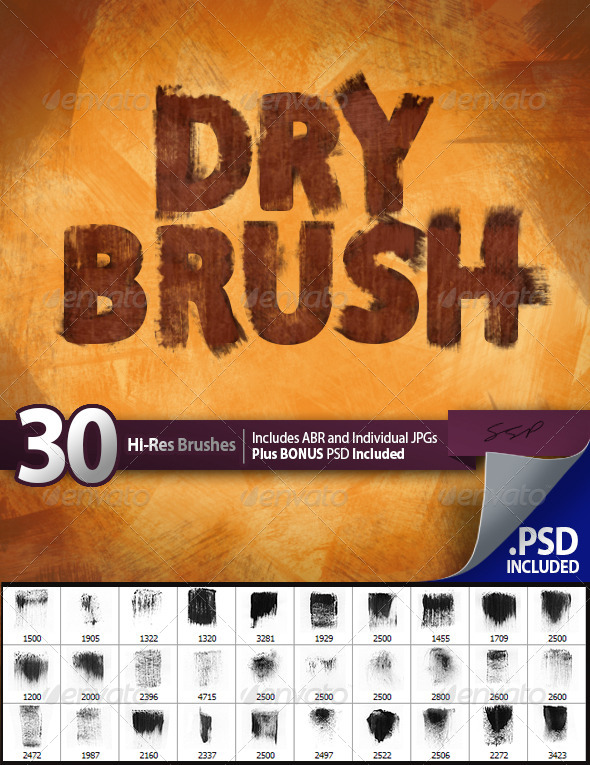 GraphicRiver 30 Dry Brushes Set 4711128