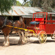 Stage Coach and Clydesdale Draught Horse - PhotoDune Item for Sale