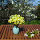 Decorated table in a sunny garden at spring - PhotoDune Item for Sale