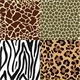 Animal Skin Patterns - GraphicRiver Item for Sale