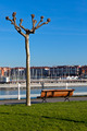 Empty wooden park bench with Marina View - PhotoDune Item for Sale