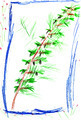 child's drawing - fir free branch - PhotoDune Item for Sale
