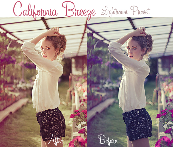 GraphicRiver California Breeze Lightroom Preset 4719931