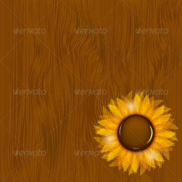 GraphicRiver Sunflowers Illustration Background 4720500