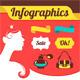Beautiful Woman's Infographics