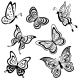 Butterflies, Contours - GraphicRiver Item for Sale