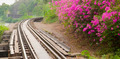 View is beautiful on Thai Railway. - PhotoDune Item for Sale