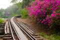 The Death Railway or The Thailand-Burma railway on World War II - PhotoDune Item for Sale