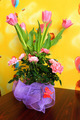 bouquet from tulips for a holiday on march, 8th - PhotoDune Item for Sale