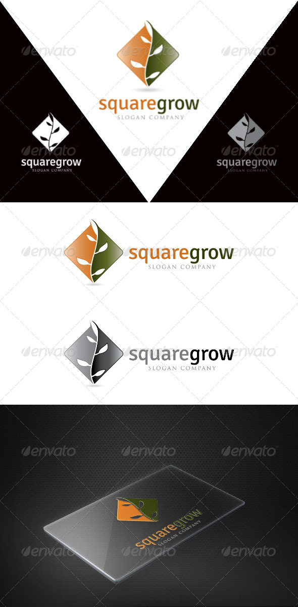 GraphicRiver Square Grow 4740813