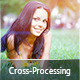 Advanced Cross-Processing Lightroom Presets - GraphicRiver Item for Sale