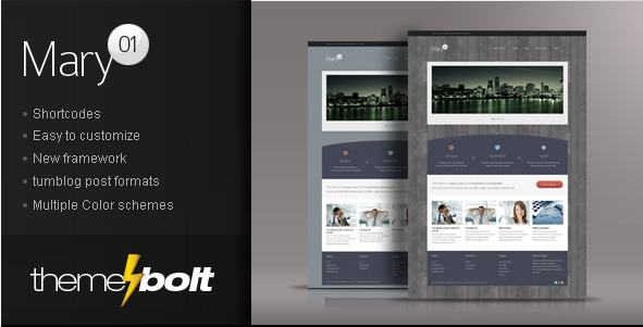 Mary - Business/Portfolio Theme