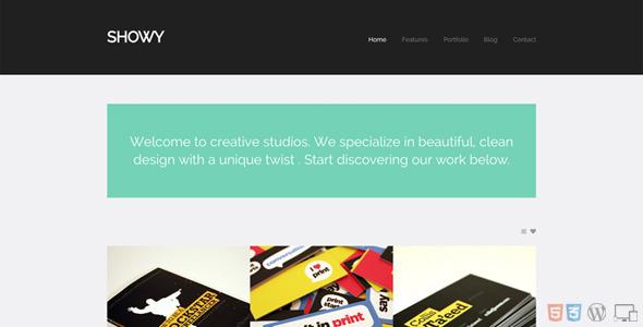 Showy – Bold & Flat Portfolio (Portfolio) images