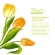 Tulip Bouquet. - GraphicRiver Item for Sale