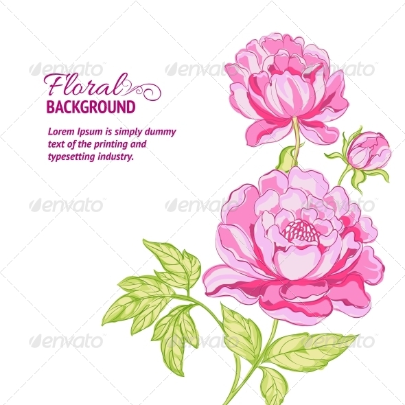 GraphicRiver Pink Peonies Background with Sample Text 4746200
