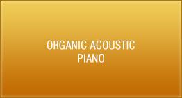 Organic Acoustic - Piano