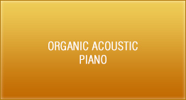 Organic Acoustic - Piano