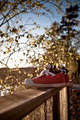 Shoes on a railing - PhotoDune Item for Sale