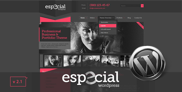 Especial - Business & Portfolio Wordpress Theme - Creative WordPress