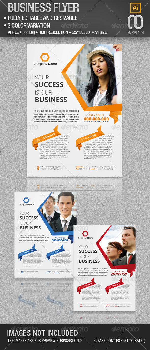 GraphicRiver Business Flyer 4758276