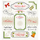 Christmas Collection Calligraphic Design Elements - GraphicRiver Item for Sale