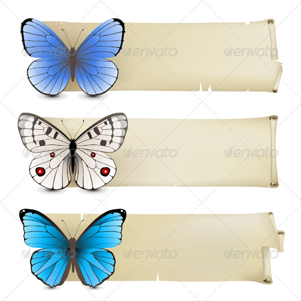 GraphicRiver Butterfly Banners 4770067