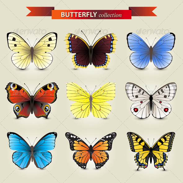 GraphicRiver Butterfly Collection 4770097