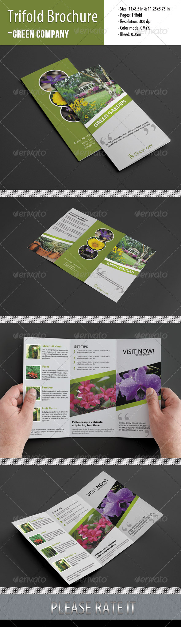 GraphicRiver Trifold Brochure For Green Company 4771251