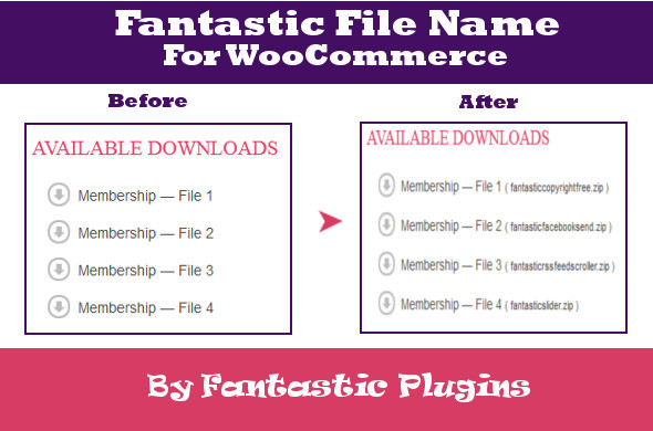 CodeCanyon Fantastic File Name For WooCommerce 4751240
