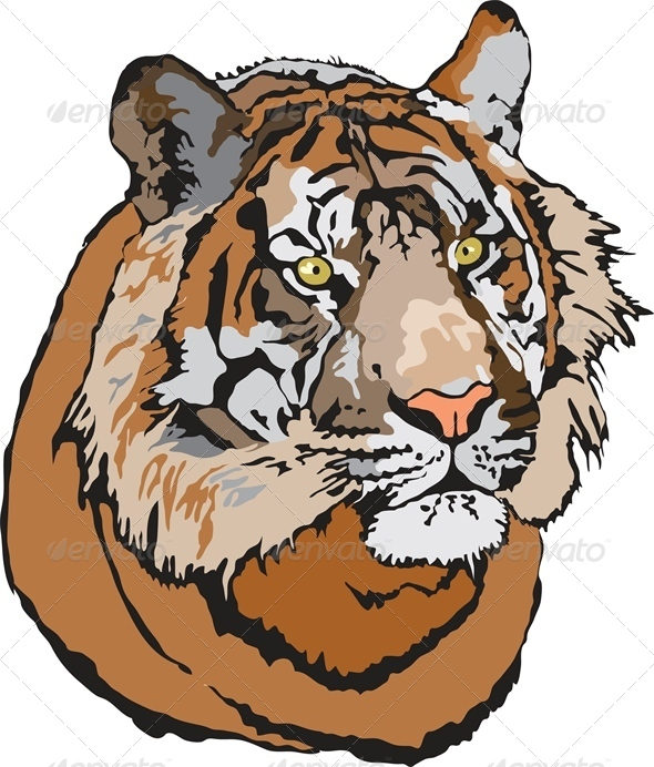 GraphicRiver Head of Tiger 4777241