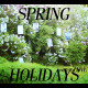 Spring Holidays - VideoHive Item for Sale
