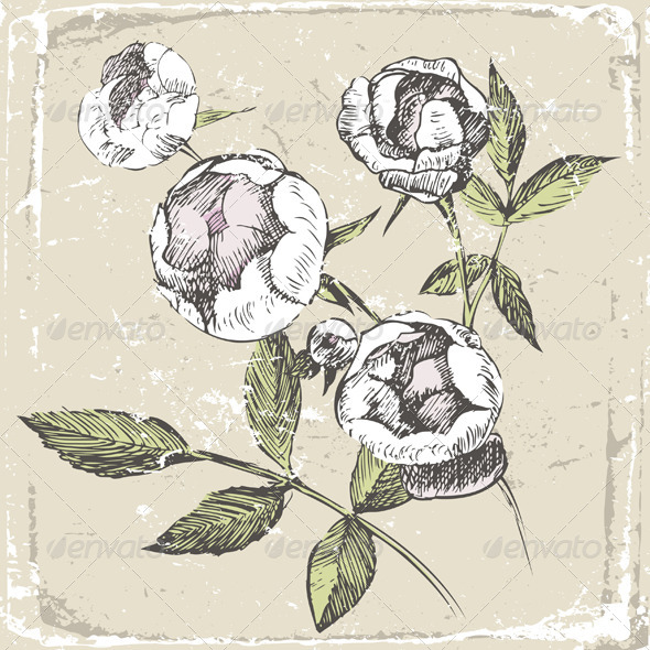 GraphicRiver Hand Drawn Roses 4780713
