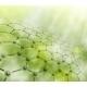 Molecular Background - GraphicRiver Item for Sale