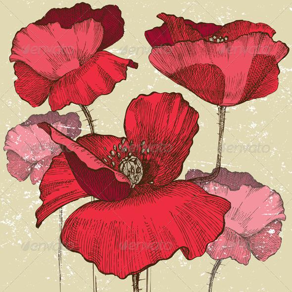 GraphicRiver Poppy Flowers 4789761