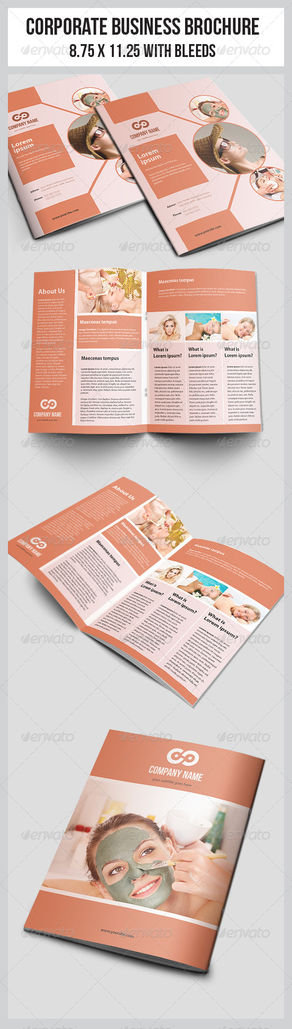 GraphicRiver Multipurpose Business Brochure Template 4707925