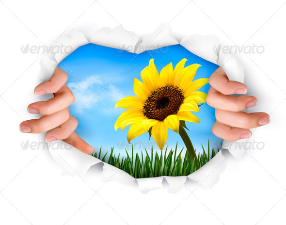 GraphicRiver Nature Background with Hands Ripping a Paper 4793057