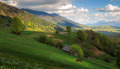 Landscape with a horse in the Carpathian mountains - PhotoDune Item for Sale