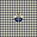 Circles - PhotoDune Item for Sale