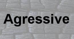 Agressive