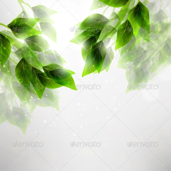 GraphicRiver Beautiful Green Leaves 4817365