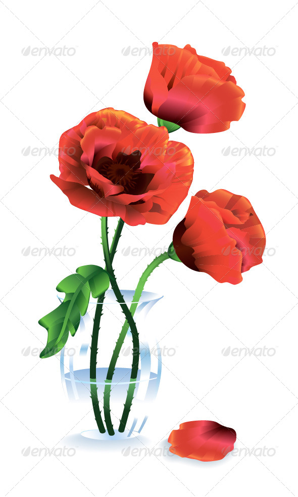 Silk Red Flowers Poppies